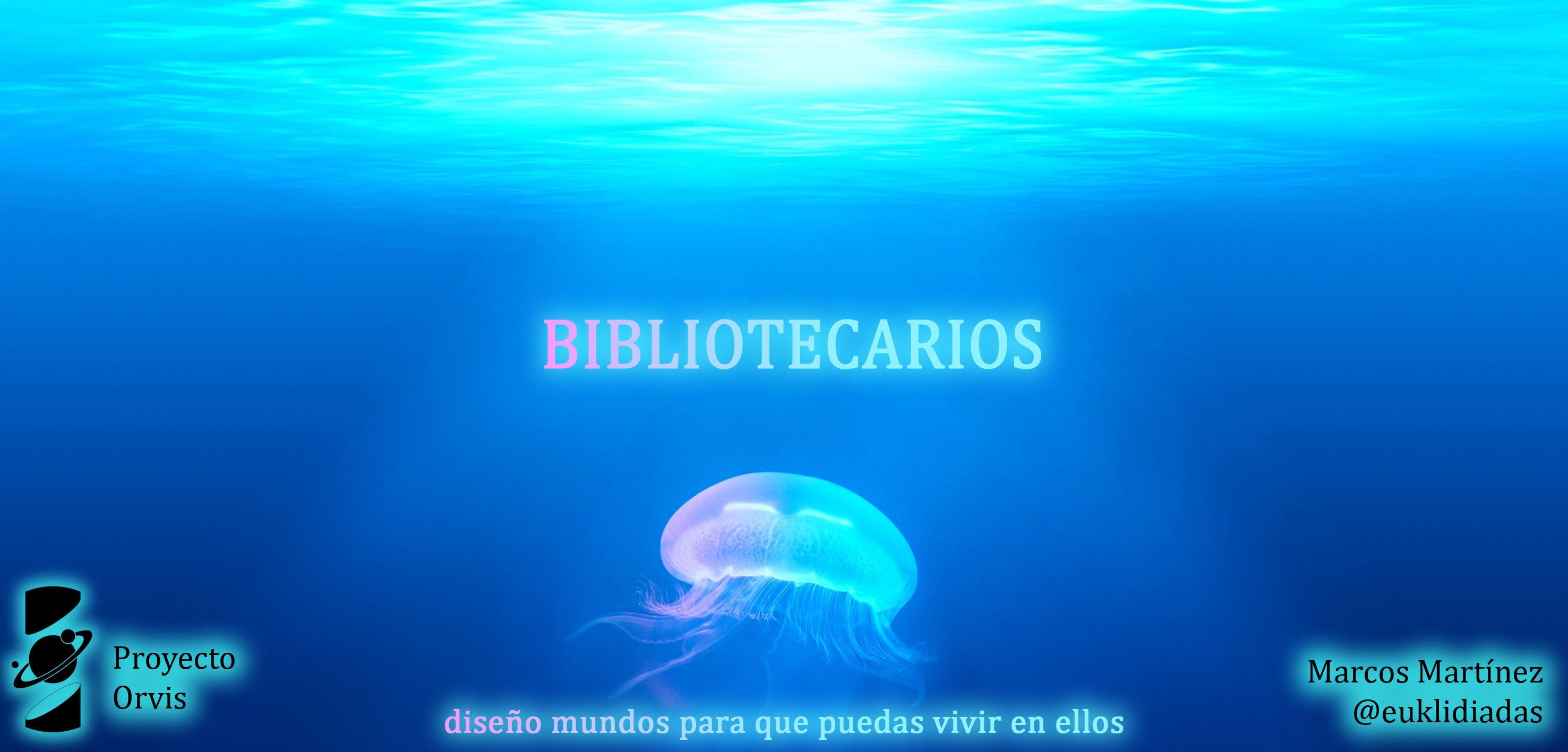 Capitulo 10 Bibliotecarios