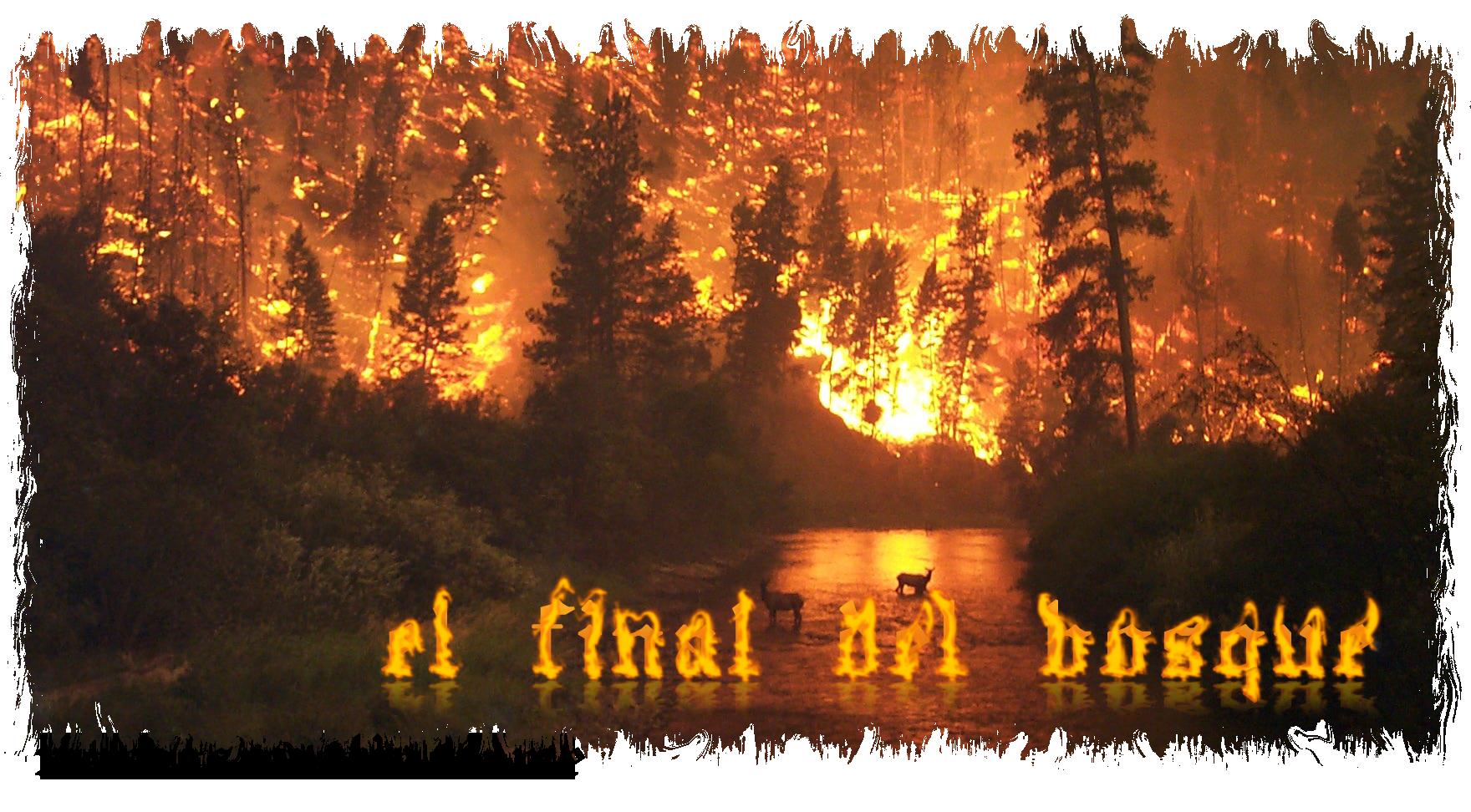 Cartel «El final del bosque»